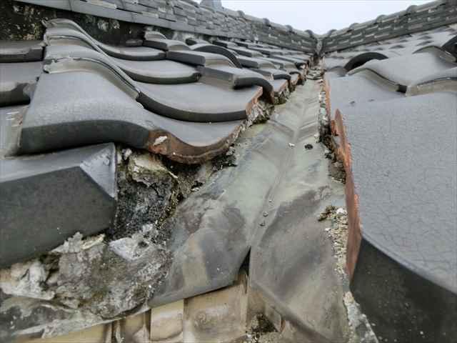 名古屋市港区にて瓦の漆喰の調査をしてきました