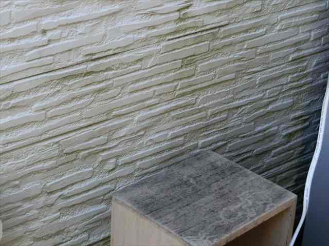 サイディングの藻