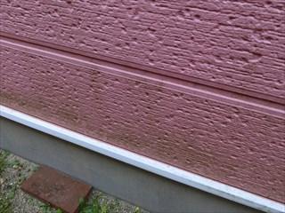 外壁のコケや藻