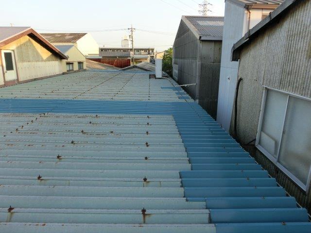 雨漏りした折半屋根