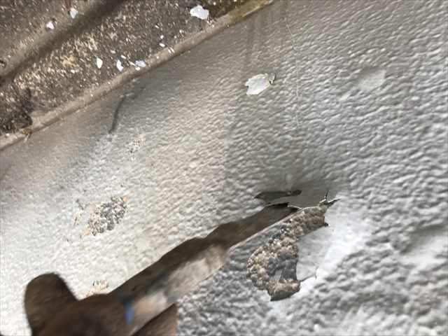 浮いている塗膜を削ってから外構の塗装工事/名古屋市港区