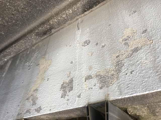 浮いた塗膜の除去