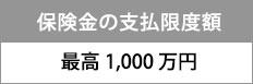 保険金の支払限度額 最高1000万円